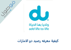 Read more about the article كيفية معرفه رصيد دو الامارات 2021